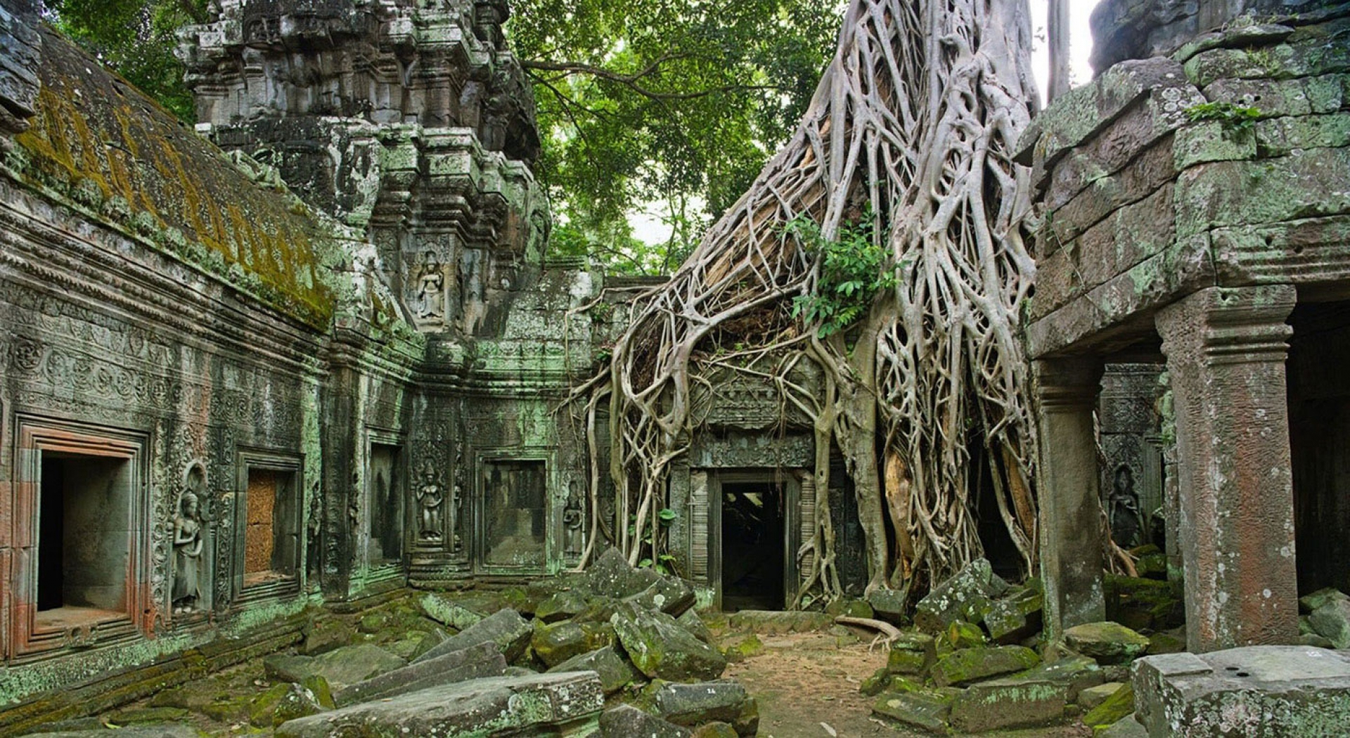 Ta Prohm,<br/> The jungle temple